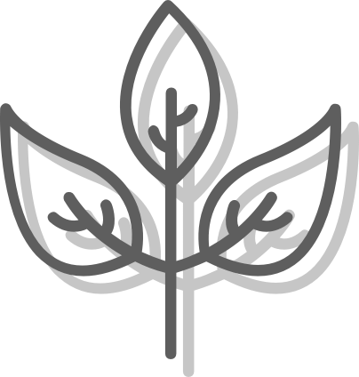 Natural herbs icon